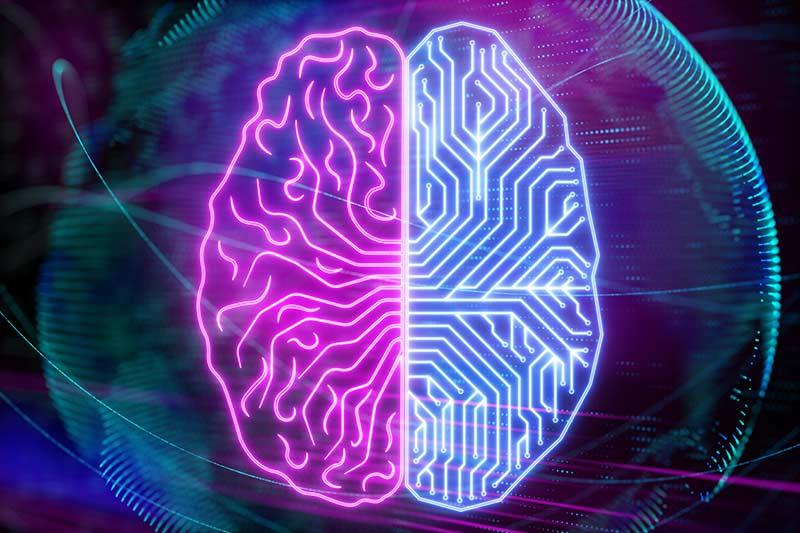 Neurociencia ¿Las partes de nuestro cerebro nos manipula?
